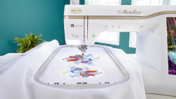 Baby Lock Meridian Large Embroidery Field